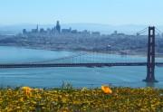Απαγόρευση του Ηλεκτρονικού Τσιγάρου στο Σαν Φρανσίσκο των ΗΠΑ
